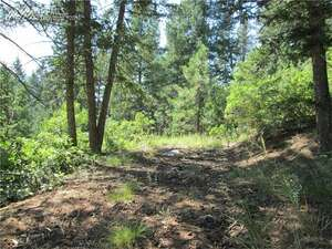 Land for Sale, ListingId:41437111, location: Upper Sun Valley Road Manitou Springs 80829