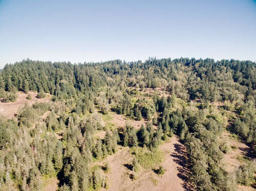 Land for Sale at Skyridge Dr Eugene, Oregon 97405 United States