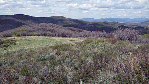 Land for Sale at 29390 Hwy 131 Oak Creek, Colorado 80467 United States