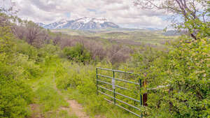 Featured Property in Paonia, CO 81428
