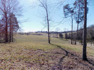 Featured Property in Vonore, TN 37885