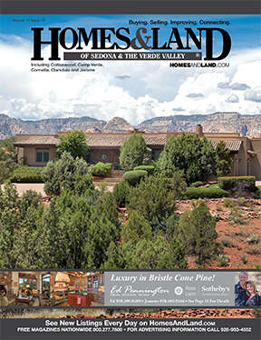HOMES & LAND Magazine Cover. Vol. 17, Issue 13, Page 17.