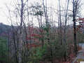 Real Estate for Sale, ListingId:49247377, location: Lot 98E Black Powder Lane Sevierville 37862