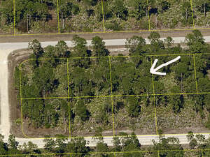 Real Estate for Sale, ListingId: 43517701, Lehigh Acres, FL  33974