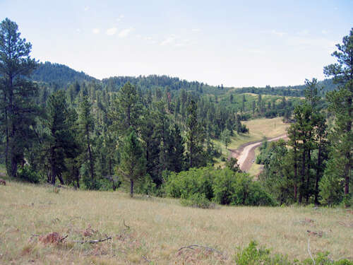 Investment for Sale at Tbd Middle Fork Rd. Devils Tower, Wyoming 82714 United States