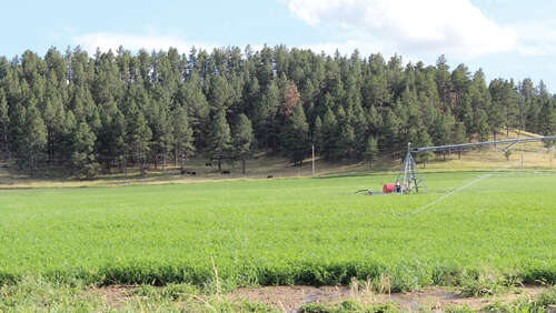 Investment for Sale at Hess Ranch Alva, Wyoming 82711 United States