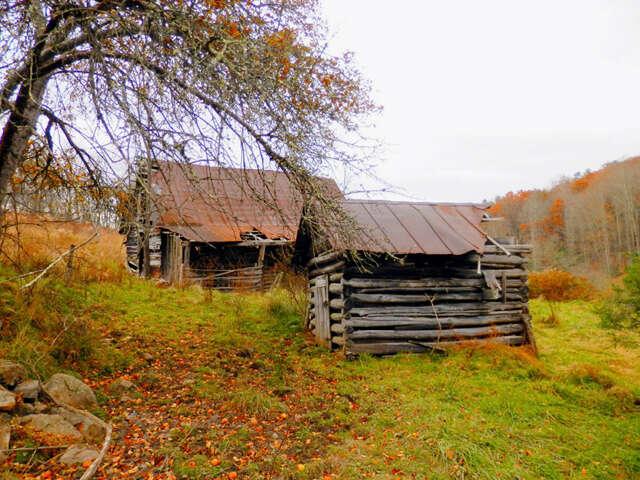 Land for Sale at 0 Rabbit Skin Road Waynesville, North Carolina 28785 United States