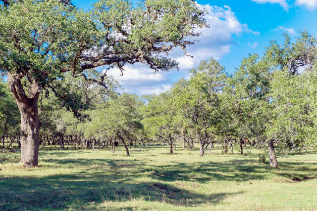 Land for Sale at 346b Ammann Boerne, Texas 78006 United States