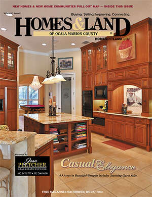 HOMES & LAND Magazine Cover. Vol. 41, Issue 06, Page 12.