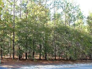 Featured Property in West End, NC 27376