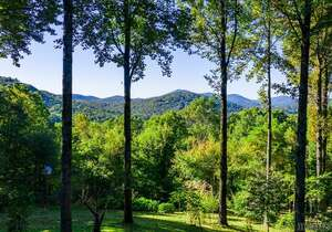 Real Estate for Sale, ListingId: 67291794, Scaly Mountain NC  28775