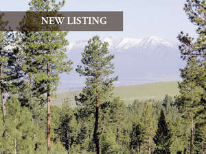 Featured Property in Stevensville, MT 59870