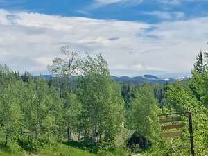 Featured Property in Clark, CO