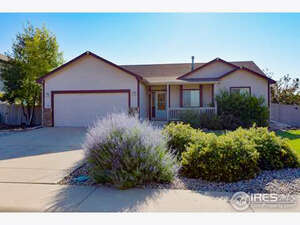 Featured Property in Wellington, CO 80549
