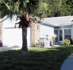 Featured Property in Palm Harbor, FL 34683