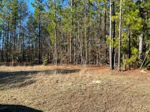 Real Estate for Sale, ListingId: 62506901, Dearing GA  30808