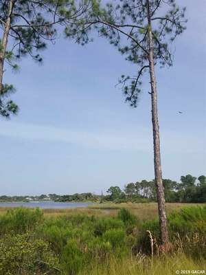 Sensational Homes For Sale Cedar Key Fl Cedar Key Real Estate Homes Home Interior And Landscaping Spoatsignezvosmurscom