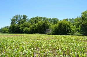 Real Estate for Sale, ListingId: 54835081, Appleton, WI  54913
