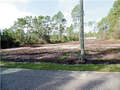 Real Estate for Sale, ListingId: 46827592, Carrabelle, FL  32322